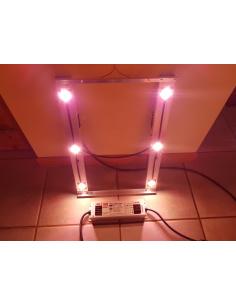 Lampe LED V4.1PF (Pure...