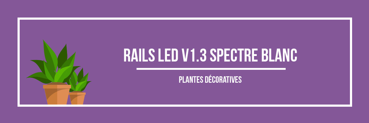 Rails LED V1.3 spectre blanc plantes décoratives