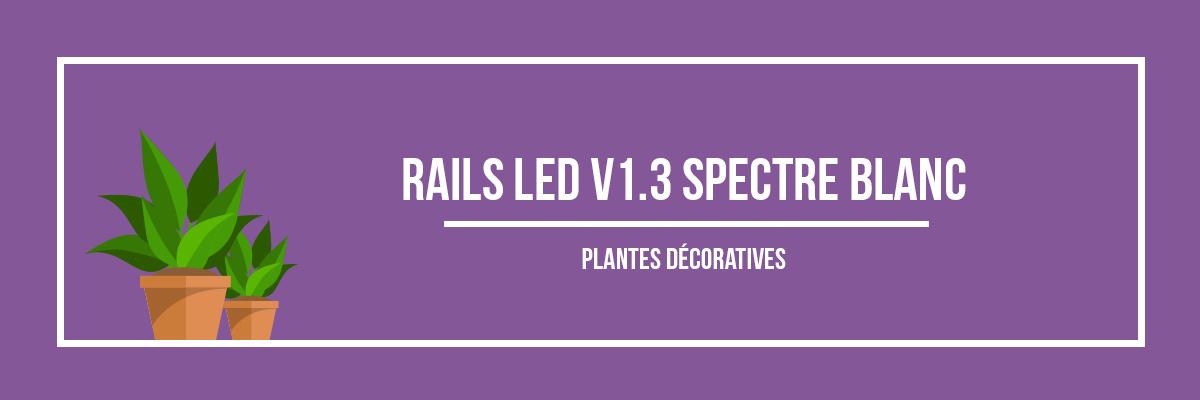 Rails LED V1.4 spectre blanc plantes décoratives